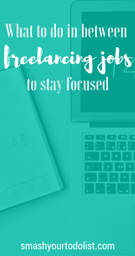 What to do in between freelancing jobs to stay focused. Tips on how to be productive when you are not working. Freelancer survival guide to when you don't have a client.